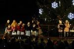 Rozsvícení vánočního stromu - 3. 12. 2017